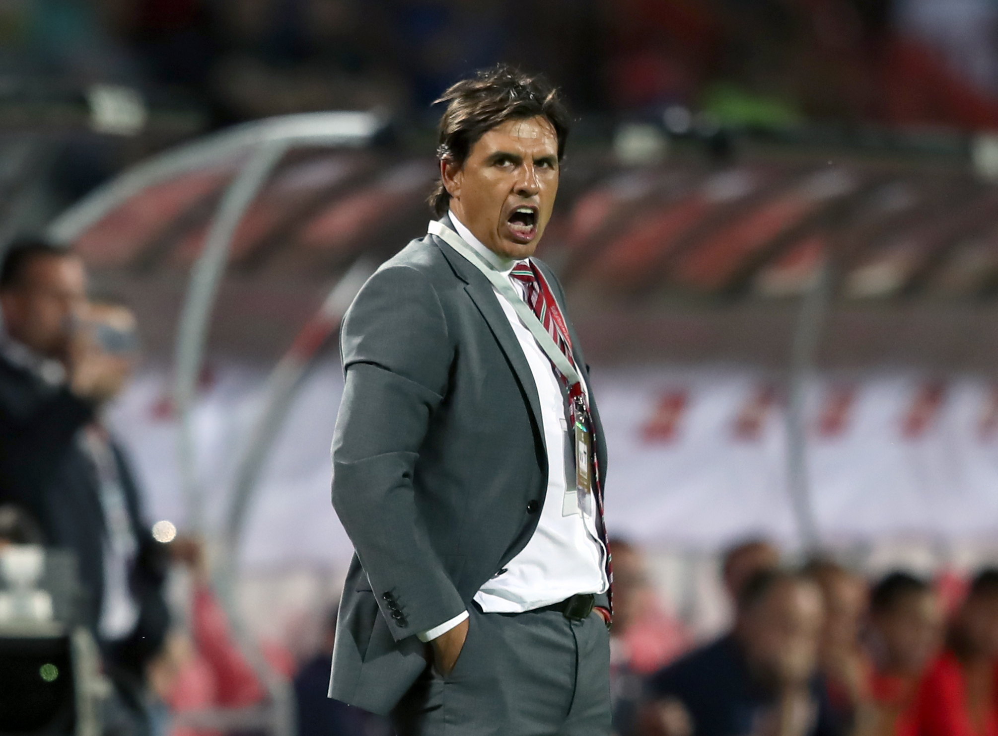 HERO: Wales manager Chris Coleman