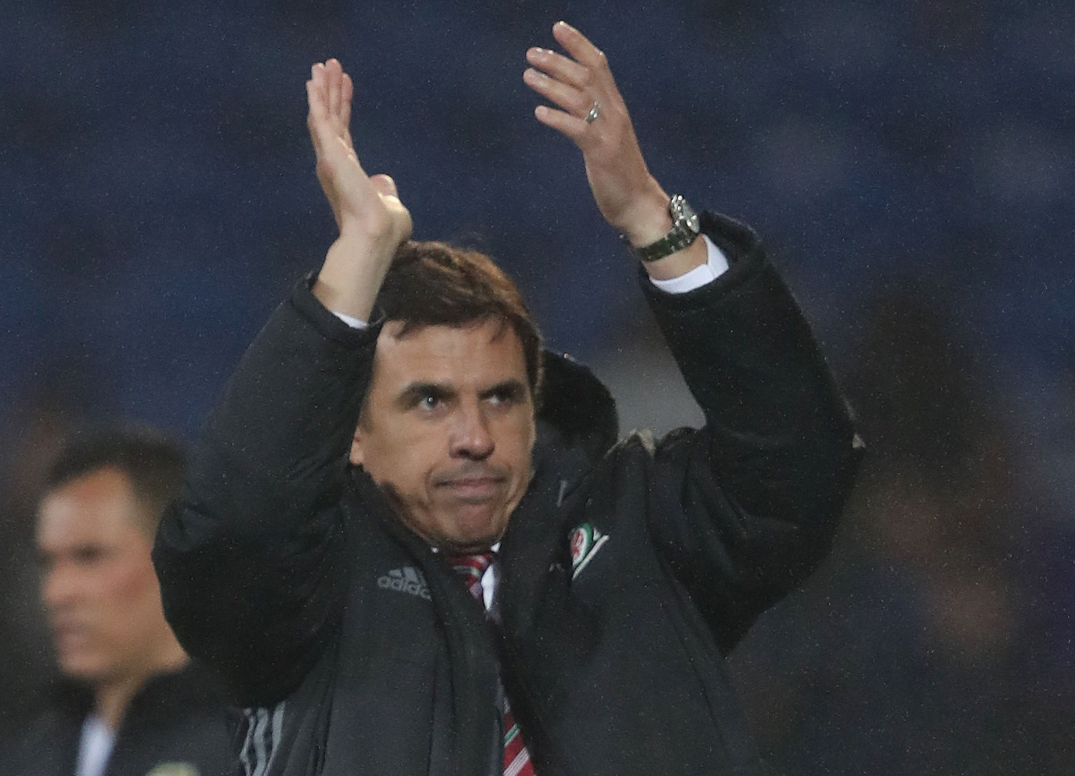 THANKFUL: Chris Coleman acknowledged the Wales fans who sang his name during last night's 1-1 draw with Panama in Cardiff