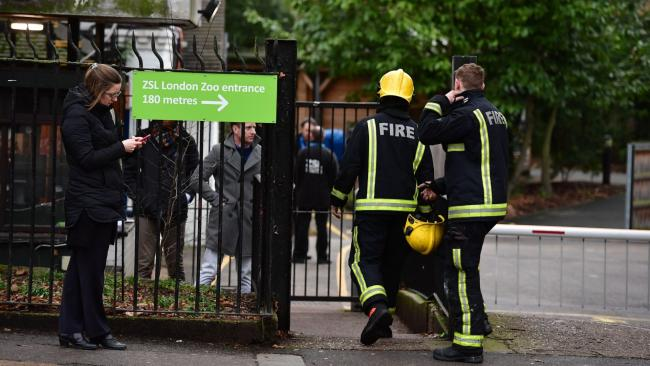 Firefighters tackled a blaze at London Zoo on Saturday