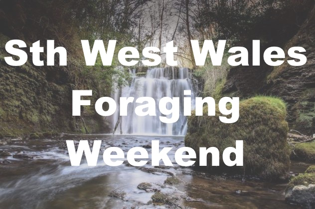 Sth West Foraging Weekend
