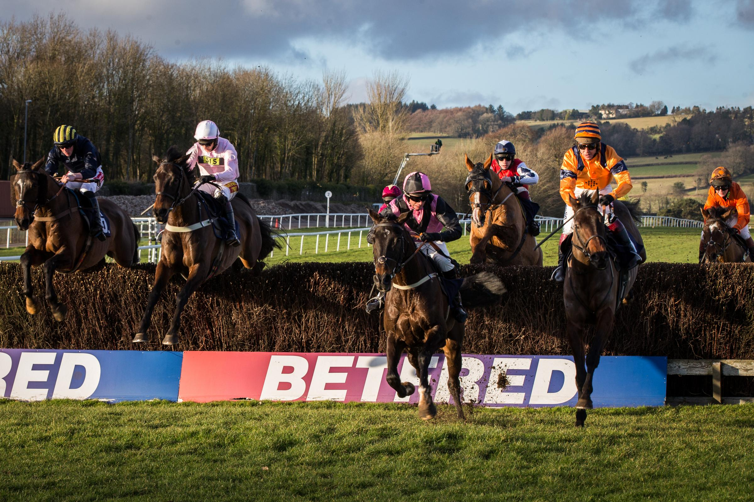 TOP RACING: Back To The Thatch (orange), seen here on the way to winning at Chepstow in January, is one of the entries in Saturday's Welsh National Trial. Paddy The Oscar, who is just ahead of him, eventually finished third