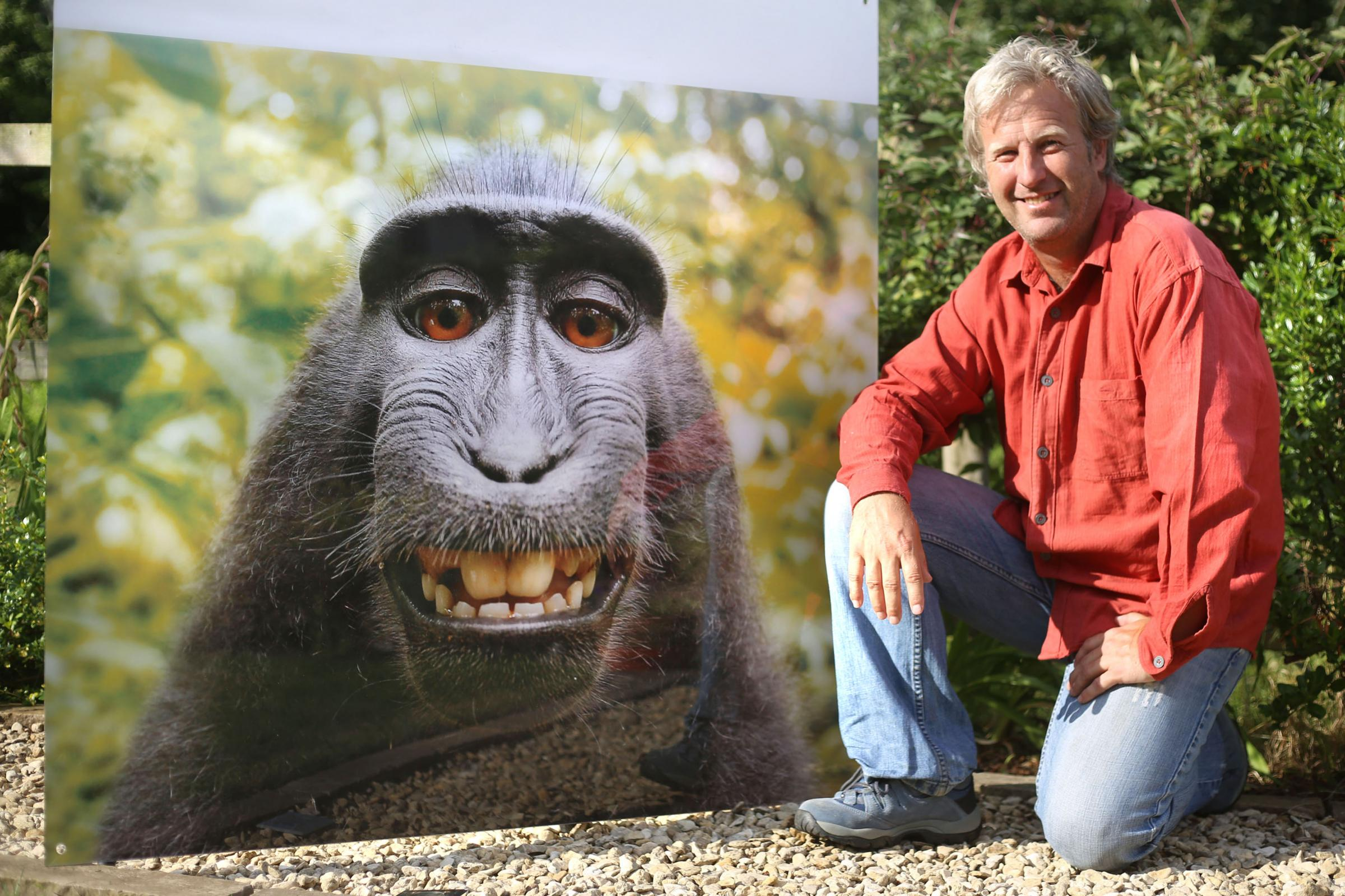 David Slater, a photographer who is based in Chepstow, and the monkey selfie