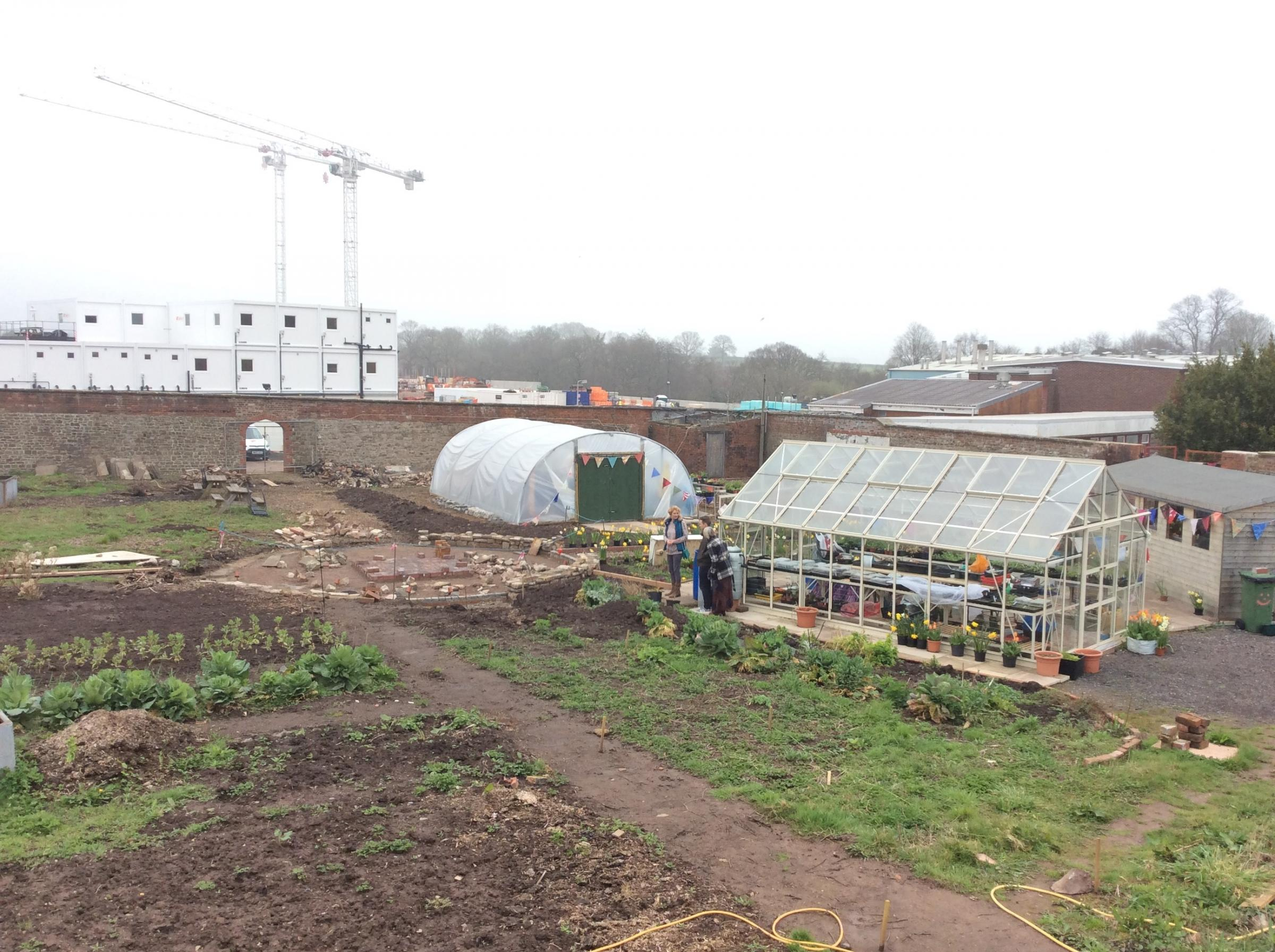 REGENERATION: When finished, the walled garden will provide a space for the public and hospital staff