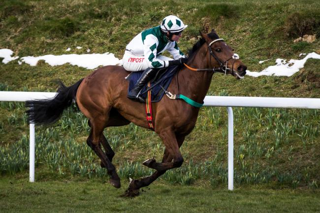 ONE TO WATCH: Beallandendall winning at Chepstow last year