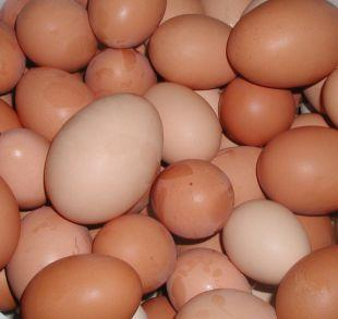 South Wales Argus: Shopkeepers ban youngsters from buying eggs