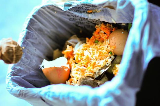 MONMOUTHSHIRE council could introduce plastic bags for food waste caddies from the New Year in a bid to increase recycling and save £33,000 per year.