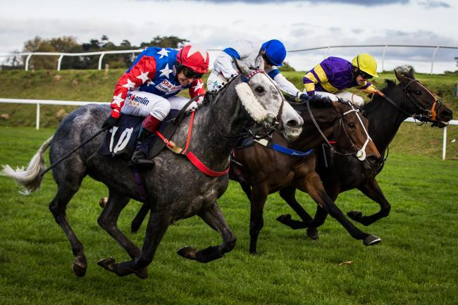 QUALITY FINISH: The grey Shadow's Girl coming out on top at Chepstow last week