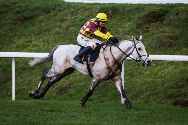 FINE FORM: Ramses De Teillee wins the Welsh National Trial