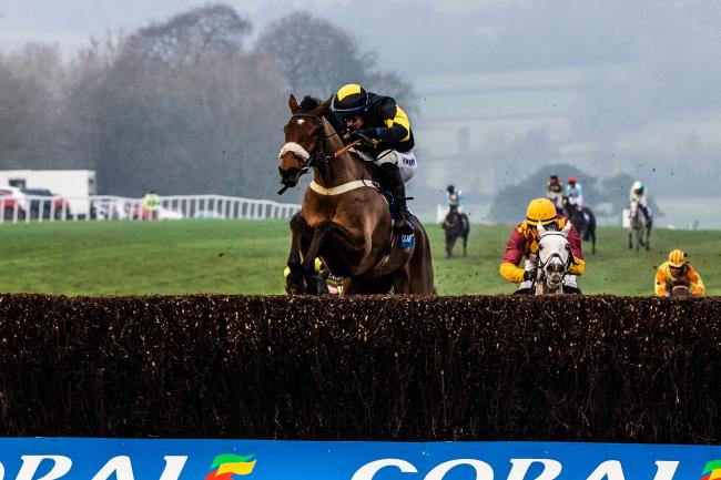 WINNER: Elegant Escape at the last fence of the Welsh Grand National