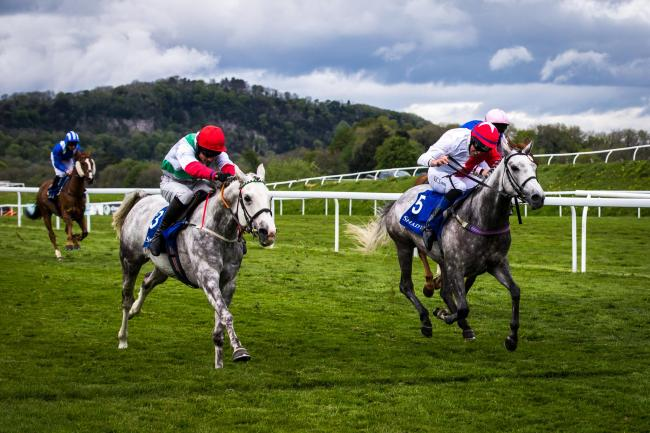 TOP RACING: Arabian horses fight out the finish at Chepstow on Friday