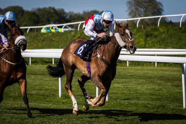 FINE RUN: Ascot Day, seen winning at Chepstow last month, could run well at this Saturday's meeting